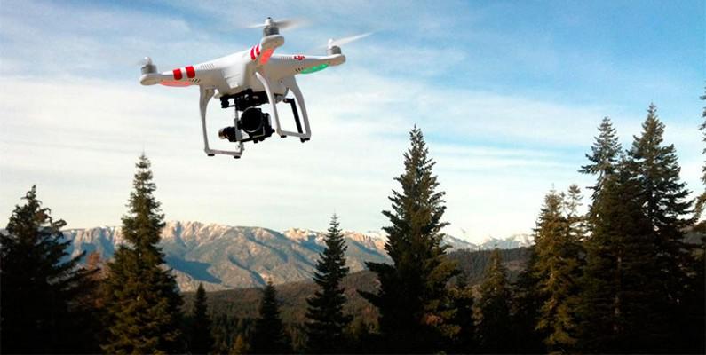 inspecciones-forestales-drones